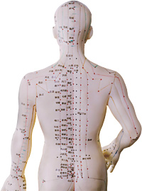 Acupuncture Found Effective for Back Pain
