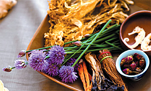 herbs - Copyright – Stock Photo / Register Mark