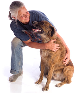 old lady and dog - Copyright – Stock Photo / Register Mark