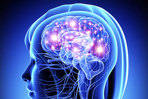 neuroscience - Copyright – Stock Photo / Register Mark
