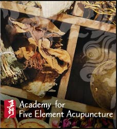Academy for 5 Element